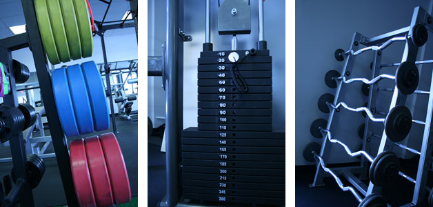 Custom Fitness Training Plan Reading PA Other Fitness and Training Services in Reading PA